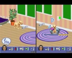 Sims 2 Pets para Nokia Asha